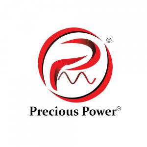 POWER LOGO ELECTRONIC
